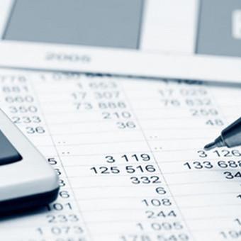 Accounting services / Buhalterio paslaugos 8 603 155 74 / UAB / Darbų pavyzdys ID 511045