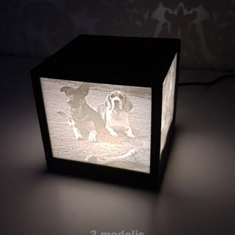 Dėžutė su jūsų nuotraukomis!