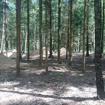 Medkirtys Vilniaus rajone / Raimundas / Darbų pavyzdys ID 513207