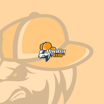 Logotipų kūrimas bei grafikos dizaino paslaugos / Valery Kitkevich / Darbų pavyzdys ID 513899