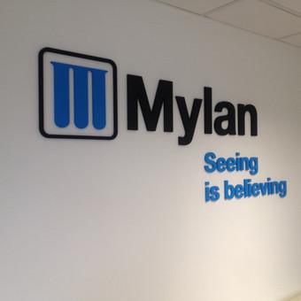 Įmonės logotipas dažytos PVC raidės