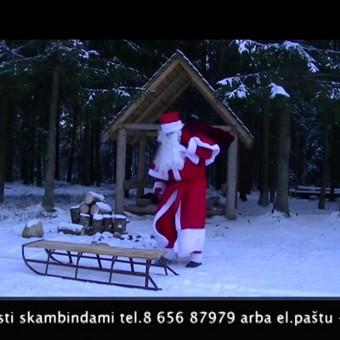 Renginių vedėjas Šarūnas (LT/RU) / Šarūnas Navionis / Darbų pavyzdys ID 515945