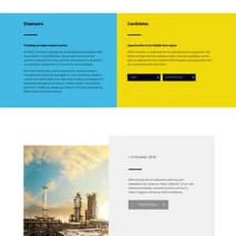 Internetinių puslapių kūrimas wordpress platforma.