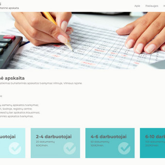 Interneto svetanių ir el.parduotuvių kūrimas ir priežiūra / Lina Va / Darbų pavyzdys ID 519685