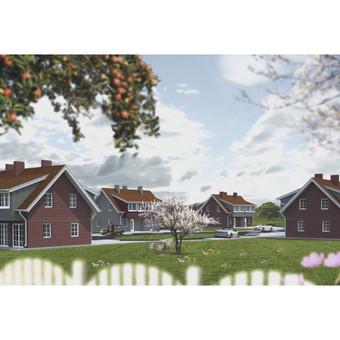 Gyvenamųjų namų projektavimas / Laimonas / Darbų pavyzdys ID 525625