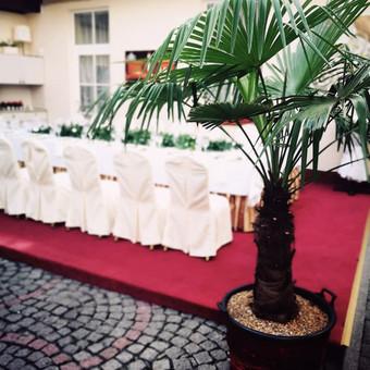 Staliukas vaišėms, švenčių, renginių dekoravimas / DILI / Darbų pavyzdys ID 528253