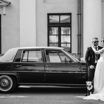 Rodis Weddings & Portraits / Rodis Weddings & Portraits / Darbų pavyzdys ID 531391