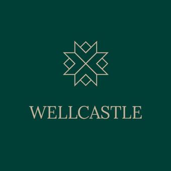 Logotipo dizainas / Brigita Nemiraitė / Darbų pavyzdys ID 532639
