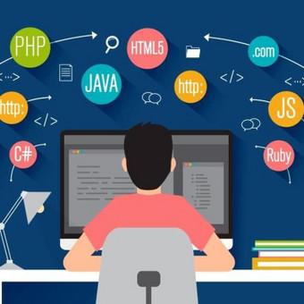 Profesionalios programavimo paslaugos / Vaidas A. / Darbų pavyzdys ID 533649