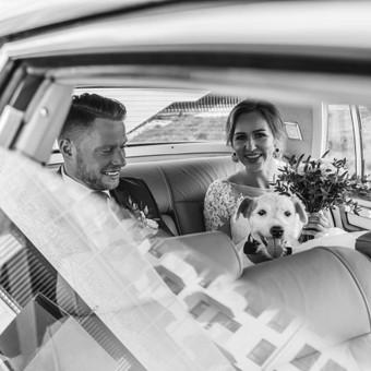 Rodis Weddings & Portraits / Rodis Weddings & Portraits / Darbų pavyzdys ID 534687