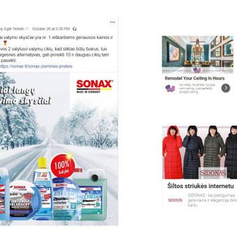 Pardavimų didinimas internetinės rinkodaros kanalais / Eglė Tertelė / Darbų pavyzdys ID 539581