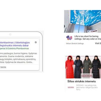 Pardavimų didinimas internetinės rinkodaros kanalais / Eglė Tertelė / Darbų pavyzdys ID 539597