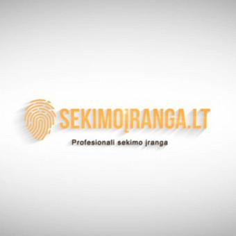 Svetainių kūrimas, Grafikos darbai, Video kūrimas / Websted.lt / Darbų pavyzdys ID 544281