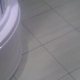 Apdailos darbai Telšių apskrityje / Vytautas Kairiūkštis / Darbų pavyzdys ID 544991
