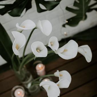 Vestuvių planuotoja - koordinatorė / IR Ideas / Darbų pavyzdys ID 545157