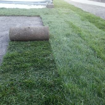 Aplinkos tvarkymas, apželdinimas, aeravimas, vejos įrengimas / Dainius Rėklaitis / Darbų pavyzdys ID 545819