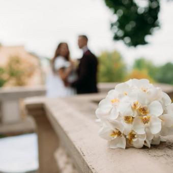 DAROM ŠVENTĘ? TAIP! Jūsų vestuvių dekoras ir organizavimas. / Darom šventę / Darbų pavyzdys ID 546681