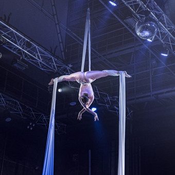 Oro akrobate / Karolina Stanionytė / Darbų pavyzdys ID 547129