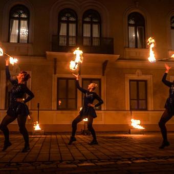 Fakyrų ugnies šou / Ugnies teatras / Darbų pavyzdys ID 550187