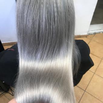 Kirpėjas, meistras, plaukų stilistas / Nijole Veliulė / Darbų pavyzdys ID 552779