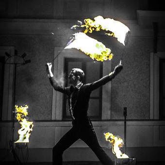 Ugnies Teatro šou / Ugnies teatras / Darbų pavyzdys ID 561321
