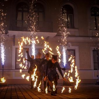 Ugnies Teatro šou / Ugnies teatras / Darbų pavyzdys ID 561351