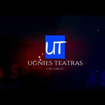 Ugnies Teatro šou / Ugnies teatras / Darbų pavyzdys ID 561441