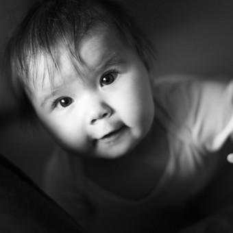 Šeimos fotografas Klaipėdoje, Palangoje, Kretingoje / Žana Milišiūnaitė / Darbų pavyzdys ID 564803