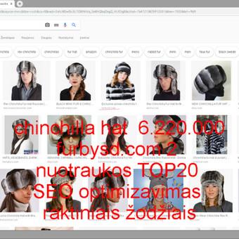 SEO optimizavimas automatizuotai naudojant individualų programavimą parenkant naudingus raktinius žodžius TOP20 iš 2 (furbysd.com).