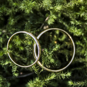 Renginių/vestuvių fotografija nuo 40€/val. / Gintarė Urbaitė / Darbų pavyzdys ID 570321