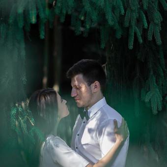 Vestuvių fotografai visoje Lietuvoje ir užsienyje / Julius ir Kristina / Darbų pavyzdys ID 573461