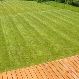 Aplinkos tvarkymas, apželdinimas, aeravimas, vejos įrengimas / Dainius Rėklaitis / Darbų pavyzdys ID 574805