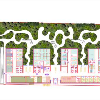 Poliklinikos kraštovaizdžio projektas