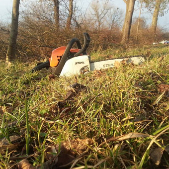 Aplinkos tvarkymas, apželdinimas, aeravimas, vejos įrengimas / Dainius Rėklaitis / Darbų pavyzdys ID 585317