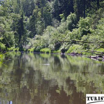 Jūros upė tinka visiems - tiek pradedantiesiems, tiek jau patyrusiems turistams