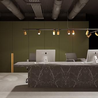 Interjero dizainas ''Daina Design Studio'' / Daina Petravice / Darbų pavyzdys ID 588795