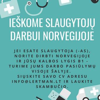 Norvegu kalbos kursai Vilniuje, Kaune arba skype / Vaida / Darbų pavyzdys ID 592165