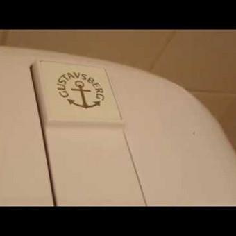Tualeto bakelio detalių keitimas #gustavsberg
