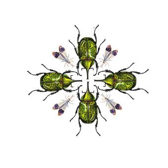 Grafinis dizainas / Jurate Feja / Darbų pavyzdys ID 604221
