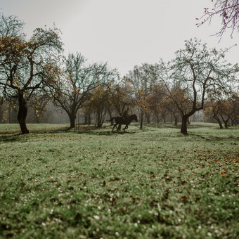 Noisylens | Meninė fotografija / Cimalanskaitė Eglė / Darbų pavyzdys ID 611925