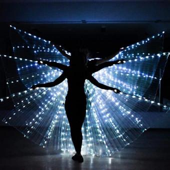 Iliuzionistas Jonas Palionis, šokėjų kolektyvas Leila Dance / Renata Leila / Darbų pavyzdys ID 616797