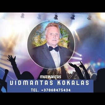 Muzikantas JŪSŲ šventei / Vidmantas Kokalas / Darbų pavyzdys ID 617791