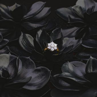 Sužadėtuvių žiedai su Deimantais / Dote Jewellery / Darbų pavyzdys ID 621229