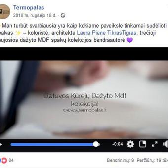 Junior komunikacijos ekspertas. 4 knygų autorius. Reklama. / Lukas Petrauskas / Darbų pavyzdys ID 623159