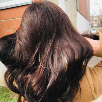 Plauku grozis43533 / Monika Vaiciulyte / Darbų pavyzdys ID 623689