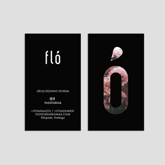 Profesionali grafikos dizainerė + dizaino pamokos / Kristina Gald / Darbų pavyzdys ID 625979