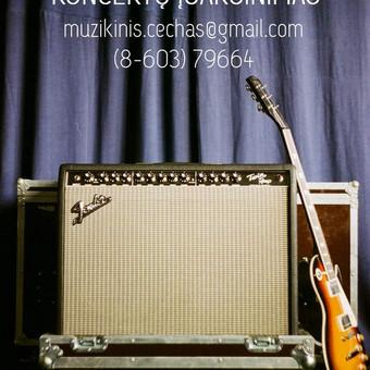 Renginių įgarsinimas ir garso aparatūros nuoma / Muzikinis Cechas / Darbų pavyzdys ID 627209
