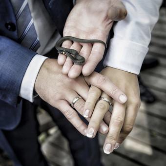 Weddings photography! Order now! / Marius Bendzelauskas / Darbų pavyzdys ID 634093