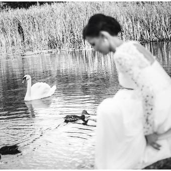 Weddings photography! Order now! / Marius Bendzelauskas / Darbų pavyzdys ID 636805
