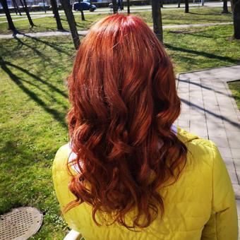 Plauku grozis43533 / Monika Vaiciulyte / Darbų pavyzdys ID 638889